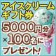 �y6�����w�ǎҌ���z�A�C�X�N���[���M�t�g��5000�~���I