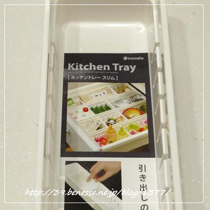 tray3.jpg