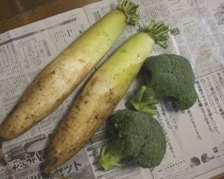 農家野菜1.jpg