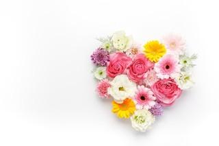 お花写真.jpg