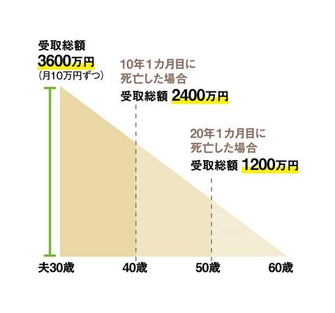 収入保障保険グラフ.jpg