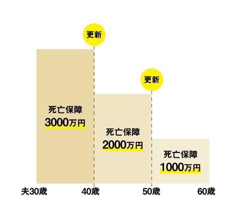 定期保険グラフ.jpg