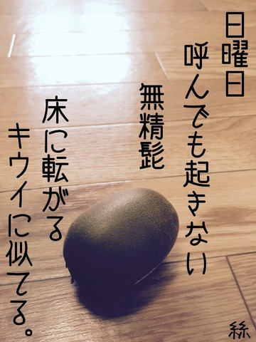 image-92ecf.jpg