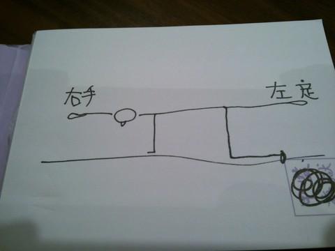 体幹画像3.JPG