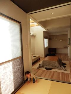 2013_0128ひまりちゃん0021.JPG