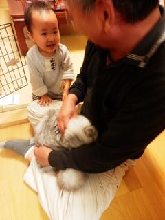 2013_1022幼稚園時代作品0031.JPG