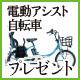 豪華! 電動アシスト付き自転車を100万円分用意!